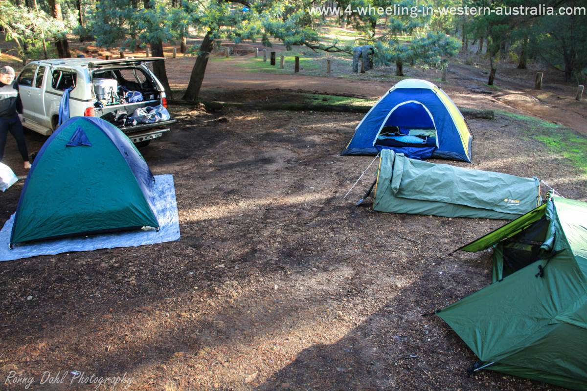 1 swag 3 Domes These Dome tents are considered a 4 man tent. & Buying Camping Tents What Are Your Options.