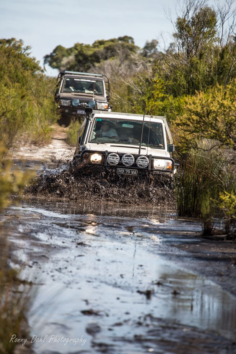 Single cab 79 series Landcruiser in mud.