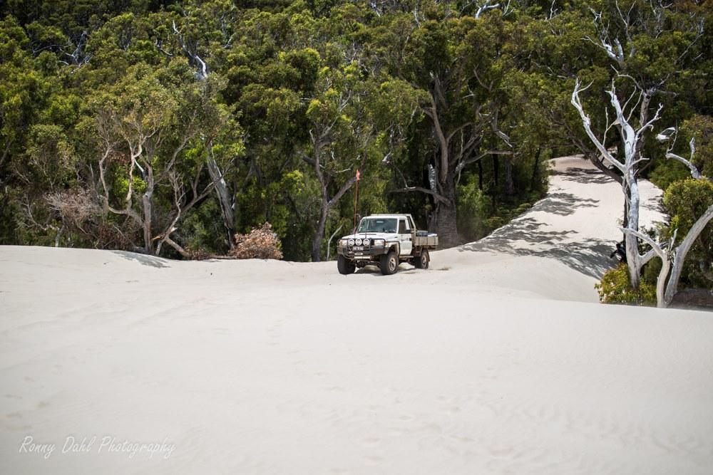 Yeagarup Dunes, Western Australia.