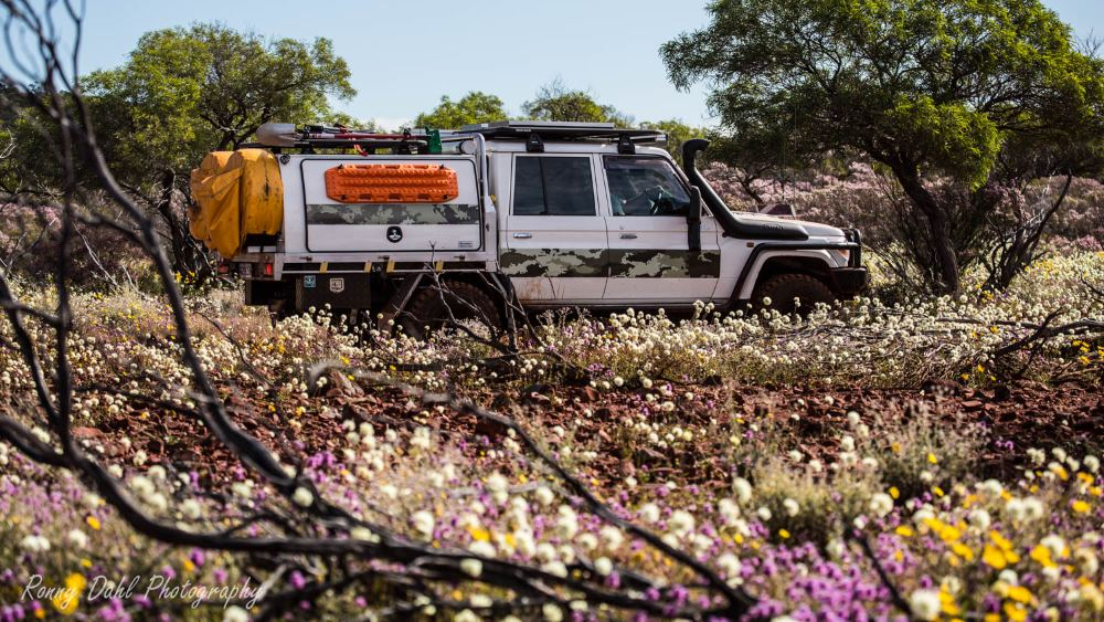 79 series Toyota Landcruiser, in the Western Australia outback.