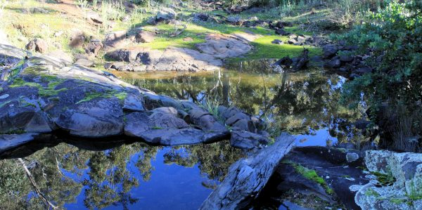 Mundaring, Western Australia.