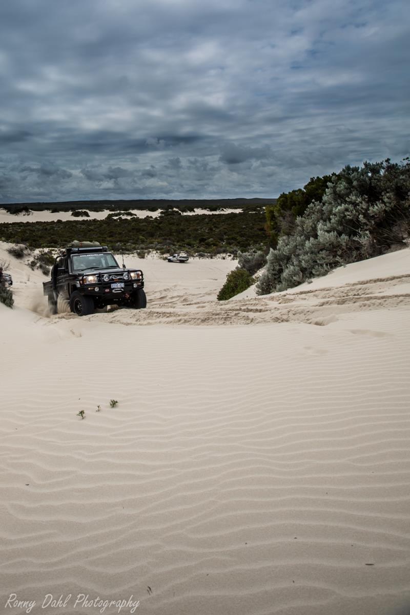 Dual cab cruiser up hill in sand dunes at Cervantes, WA