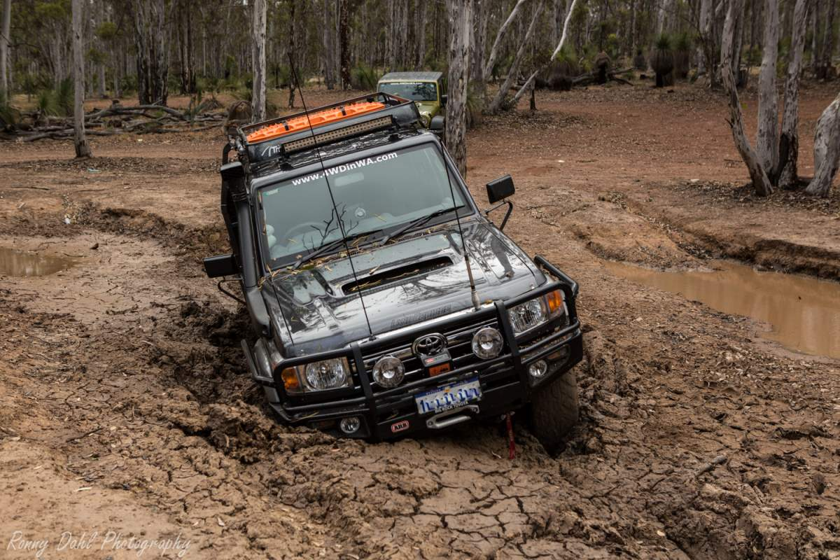 79 Series Toyota Landcruiser stuckin a bog hole.