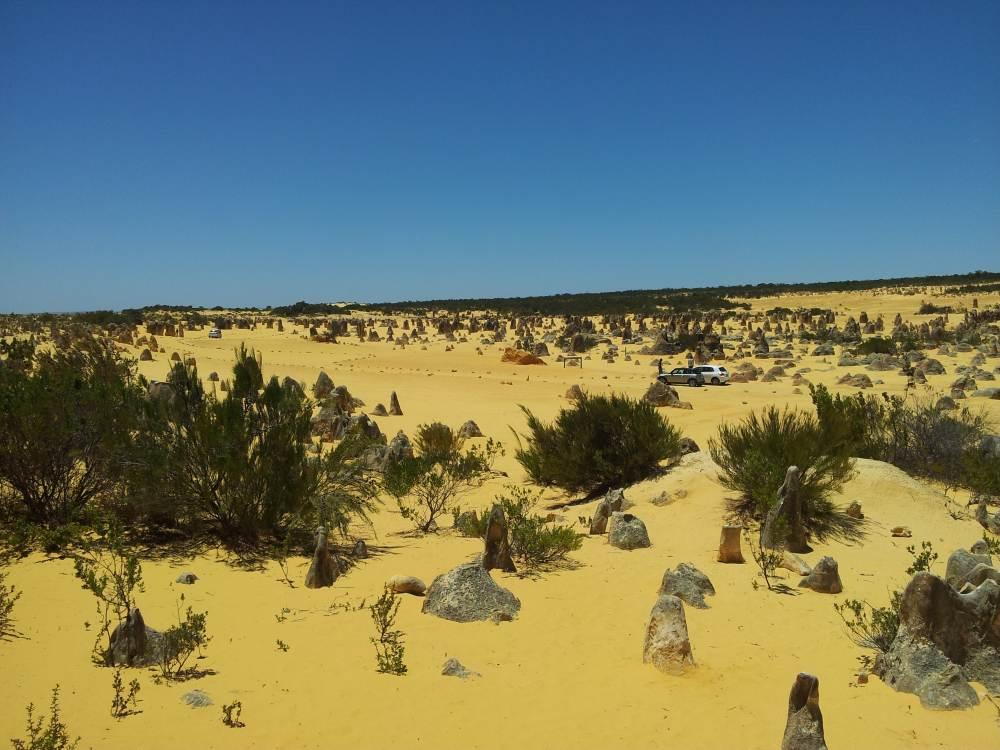 Pinnacle Desert,WA