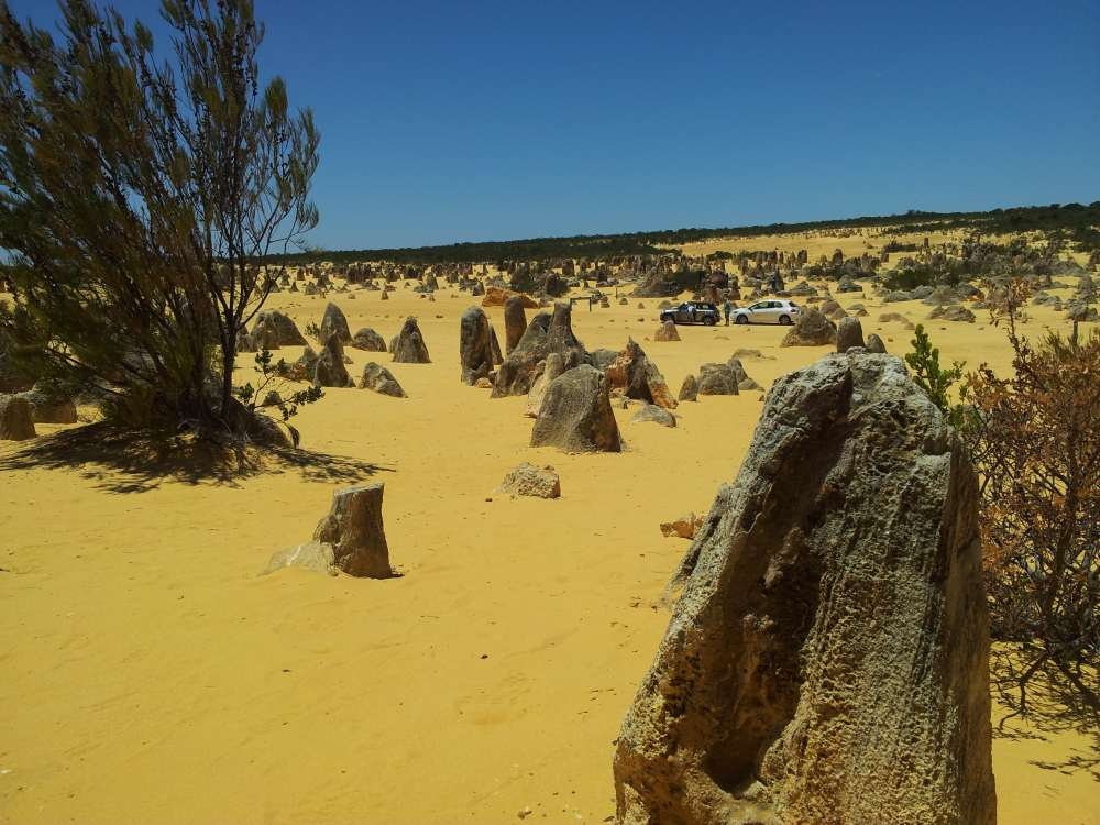 Pinnacle Desert.WA