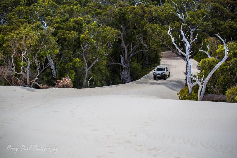 Yeagarup dunes entry.