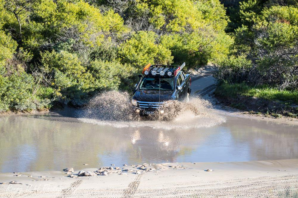 Ford Ranger XLT in water.