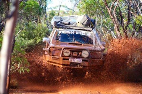 Nissan Navara D22 on the bush track.