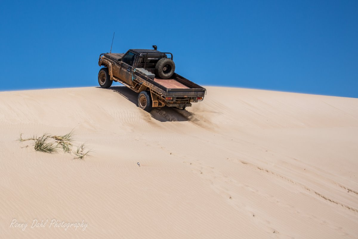 Land Cruiser playing in the sand.