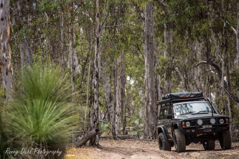 Ford Maverick 4x4 SWB on a bush track.
