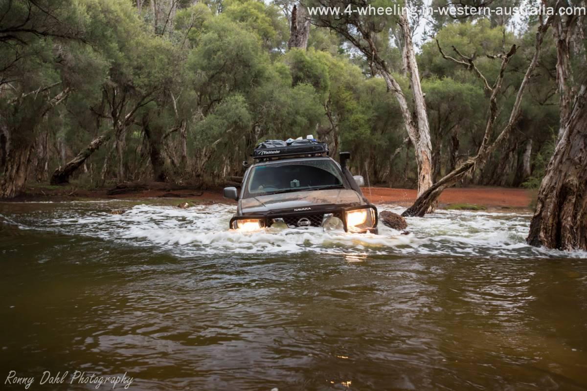 Nissan Navara crossing Murray river. Western Australia.
