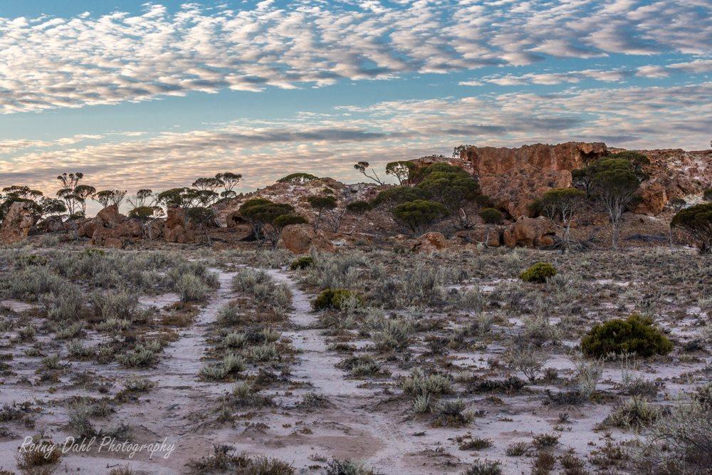 Outback, Western Australia.