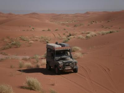 In the Sahara, low dunes