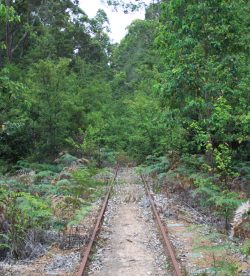 old railway in Pemberton WA
