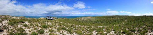 Seabird Panorama.