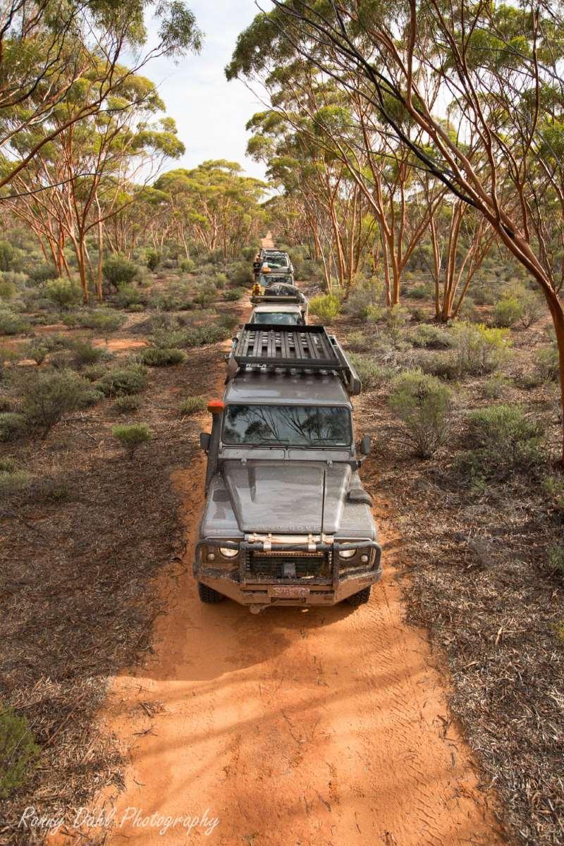 The Woodline Track, Western Australia.