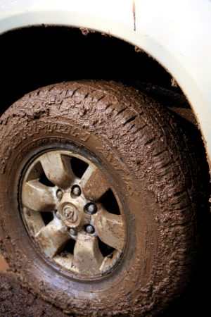 Muddy All Terrain Tire.