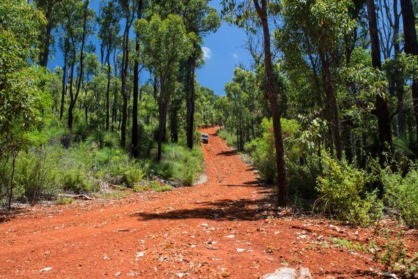 Pathfinder Descending One of Many Hills