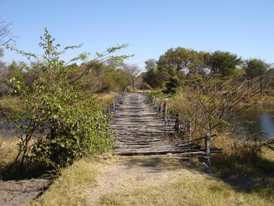 Bush bridge.