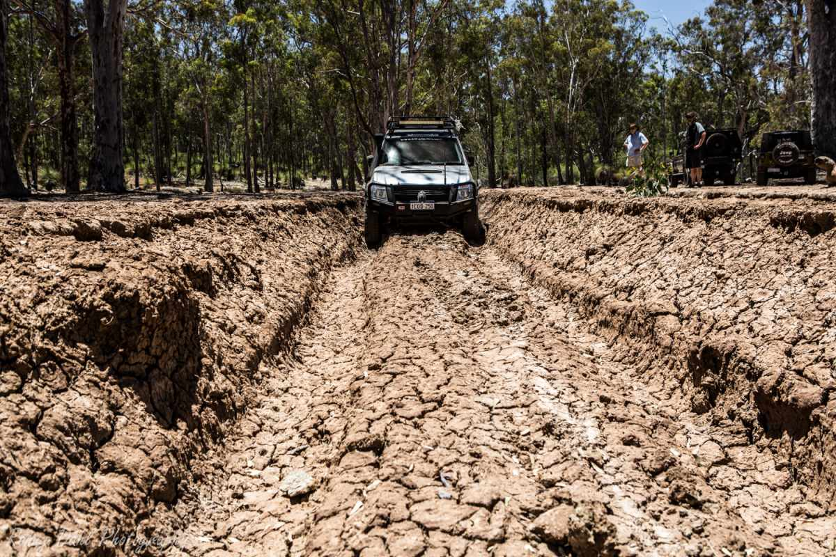 Dry boghole at Julimar State Forest, Western Australia.