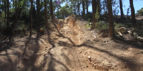 Gnarly Hill at Mundaring