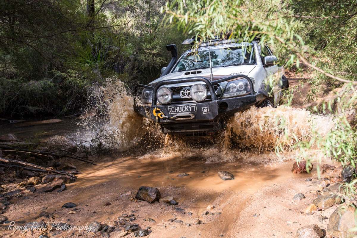 Toyota Hilux in the busch.