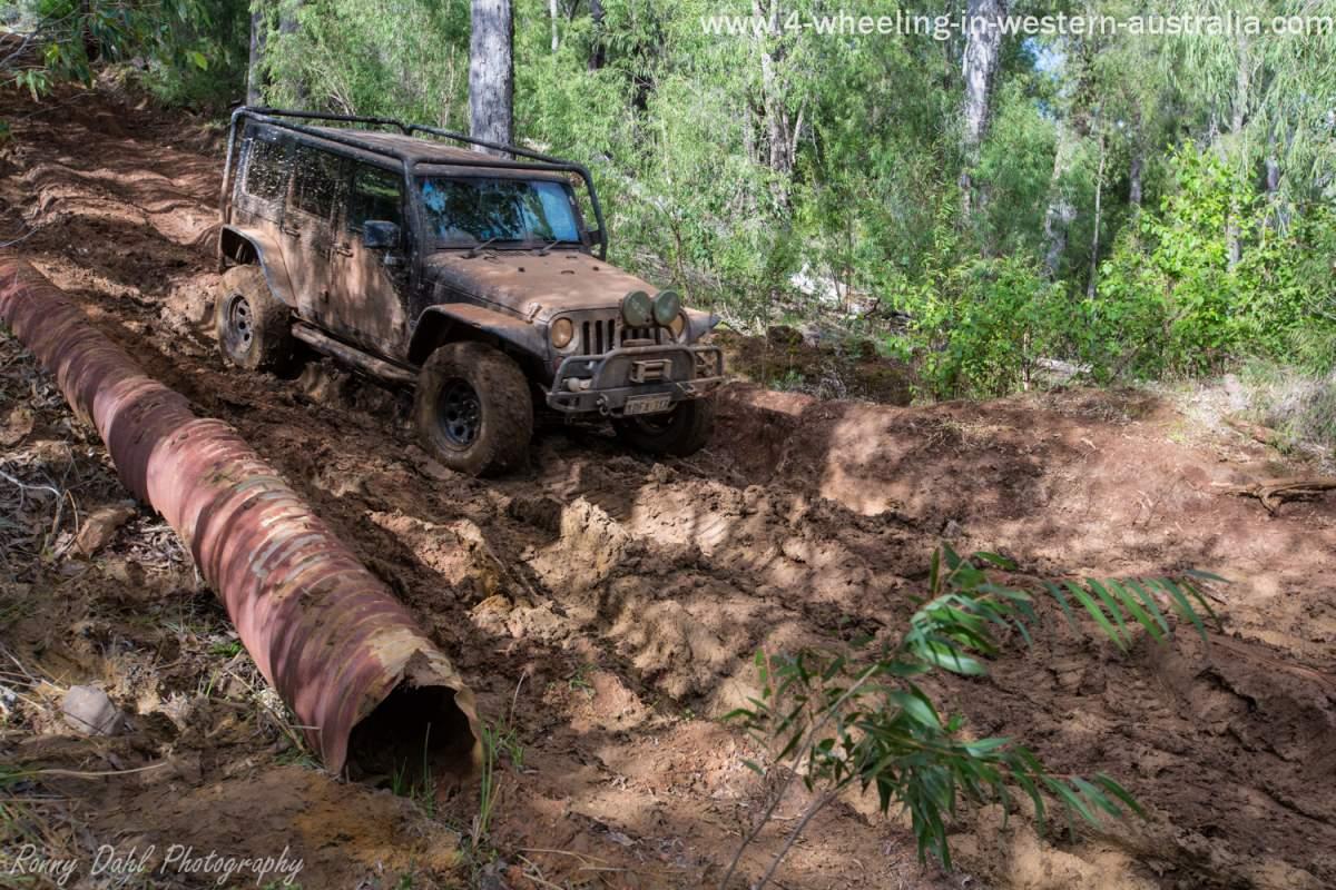 A Jeep Wrangler enjoying the rutted hills at Harvey. Western Australia.