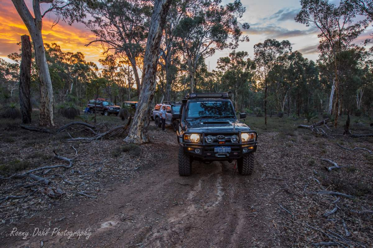 4wd night run at dusk.