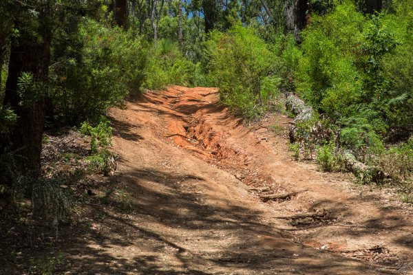 Ruts are quite common along the track.