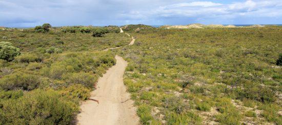 Sand track.
